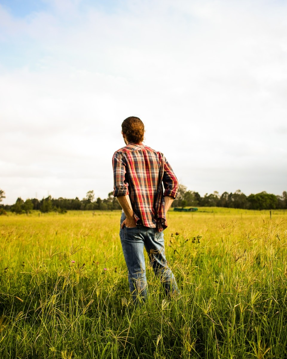 man in red and white plaid dress shirt and blue denim jeans standing on green grass